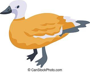 Duck bird icon, isometric style