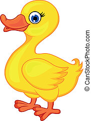 Duck cartoon - Vector illustration of duck cartoon