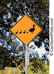Duck Crossing Warning Road Sign