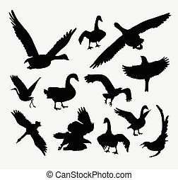 Duck, goose, swan, eagle bird silhouette