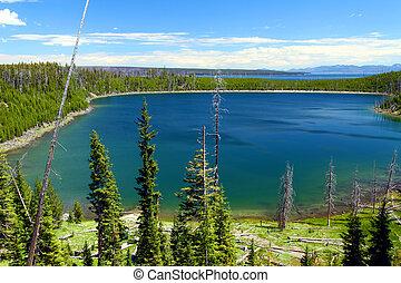 Duck Lake - Yellowstone NP - Duck Lake lit by bright...