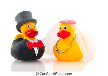 duck marriage - Duck marriage between two whole dressed...