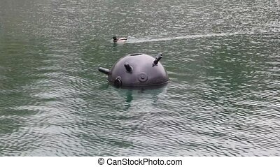 duck swimming past sea mine in water of navy exhibition