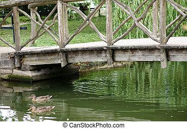 Duck under the wooden bridge
