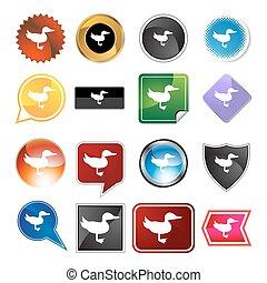 Duck Variety Icon Set