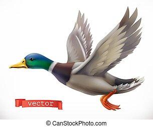 duck., vecteur, 3d, chasse, icône