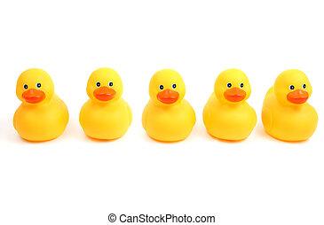 Yellow bath time ducks in a row