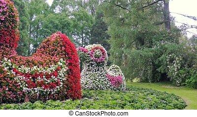 Ducks of flowers..