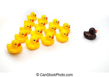 ducks squadron on white fund