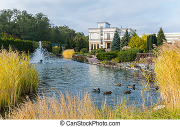 Ducks swimming in a blue clear lake with fountains on the background of a large park area