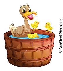 Ducks taking a bath at the bathtub