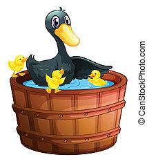 Ducks taking a bath