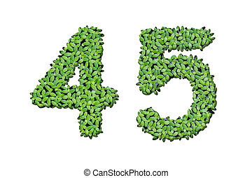 Duckweed alphabet letters - Number 4, 5 isolated on white ...