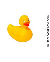 ducky caoutchouc