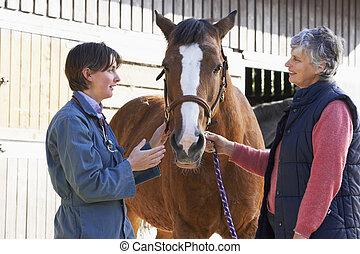 dueño, veterinario, caballo, discusión