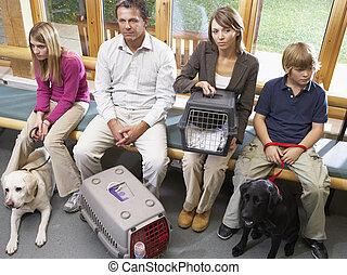 dueños, sentado, veterinarios, área de recepción