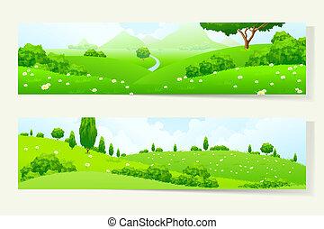 due, bandiere orizzontali, con, natura, landscale