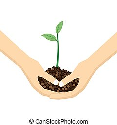 due mani, presa a terra, giovane, plant.