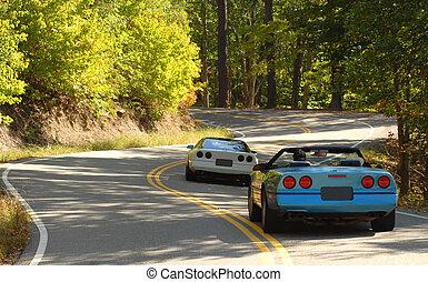 due, mette mostra automobili, guida, su, uno, strada winding