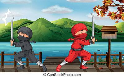 due, ninjas