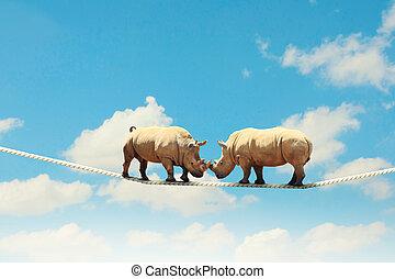 due, rinoceronte, camminare, su, corda
