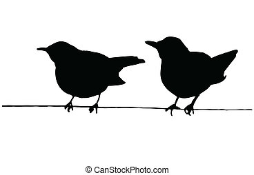 due uccelli, su, il, filo