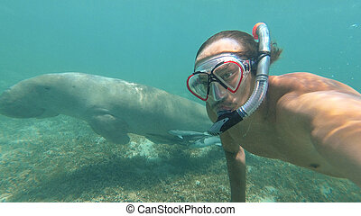 Dugong. The guy makes selfie with Dugong. Red sea. Marsa Alam.