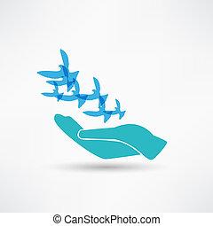 duif, illustratie, hand