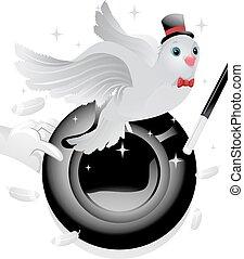 duif, magisch, hoedje, spitsroede, rekwisieten