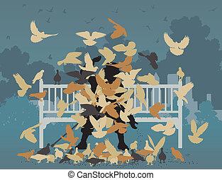 duif, park