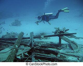 duiker, diep
