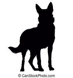 duitse herdershond, silhouette