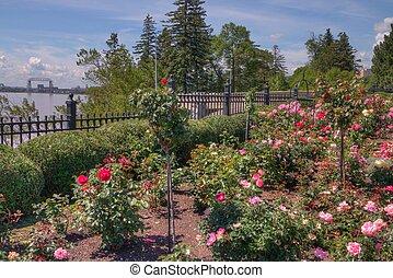 Duluth Flower Garden