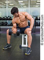 dumbbell, 筋肉, 人間が運動する, ジム
