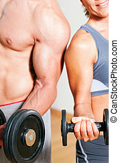 Dumbbell exercise in gym - Couple exercising with dumbbells ...