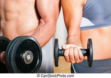 Dumbbell exercise in gym - Couple exercising with dumbbells...