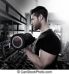 dumbbell, hombre gimnasio, entrenamiento, bíceps, condición...