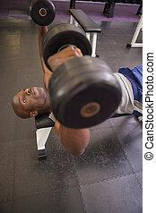 dumbbells, exercitar, muscular, homem