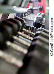 Dumbbells In Row At Fitness Club
