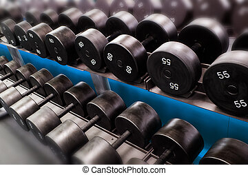 Dumbbells lined up in a fitness club