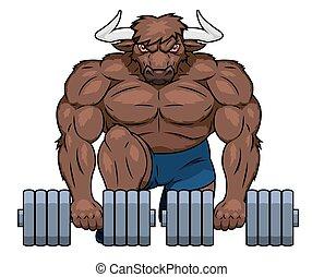 dumbbells, muscolare, sollevamento, toro