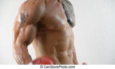 dumbbells, sans chemise, exercisme, musculaire, jeune homme