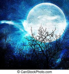 dumbom, natt, illustration, måne