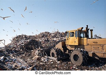 city dump & bulldozer ГородÑ?каÑ? Ñ?валка. Бульдозер. Чайки.