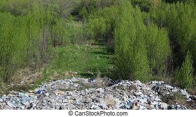 Dump construction debris
