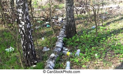 Dump garbage in the forest, environmental pollution, sunny summer meadow