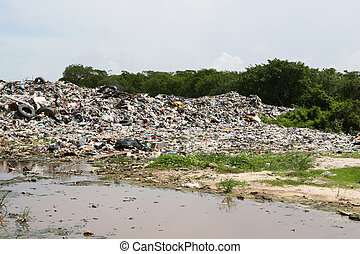 Dumping Waste - An illegal dumping site outside of Belize...