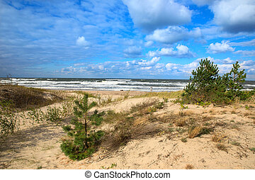 dunas, báltico, mar areia