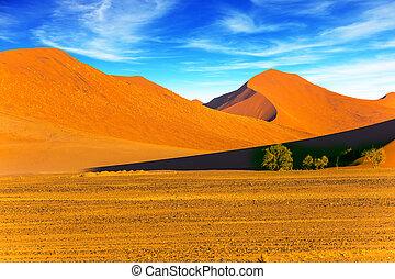 dunas, de, el, desierto de namib