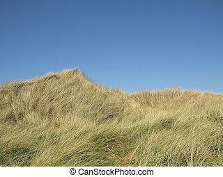 dunas, debajo, un, cielo azul